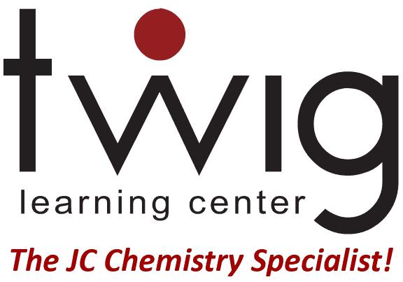 Twig big logo